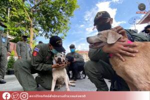 พิธีปลดประจำการสุนัขสืบหาวัตถุระเบิด กลุ่มงานเก็บกู้วัตถุระเบิด บก.สปพ.191